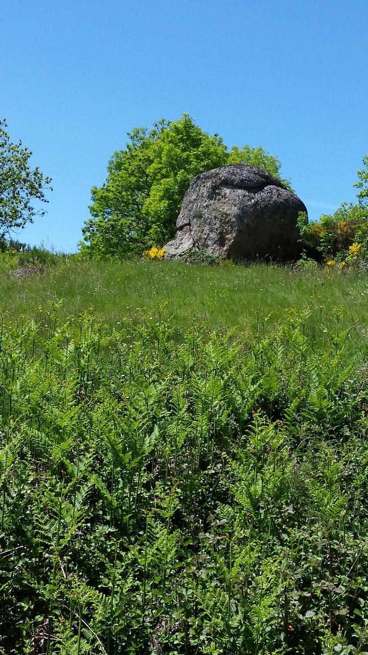 Un rocher en Margeride, visite de groupes, La Margeride, Saugues Auvergne