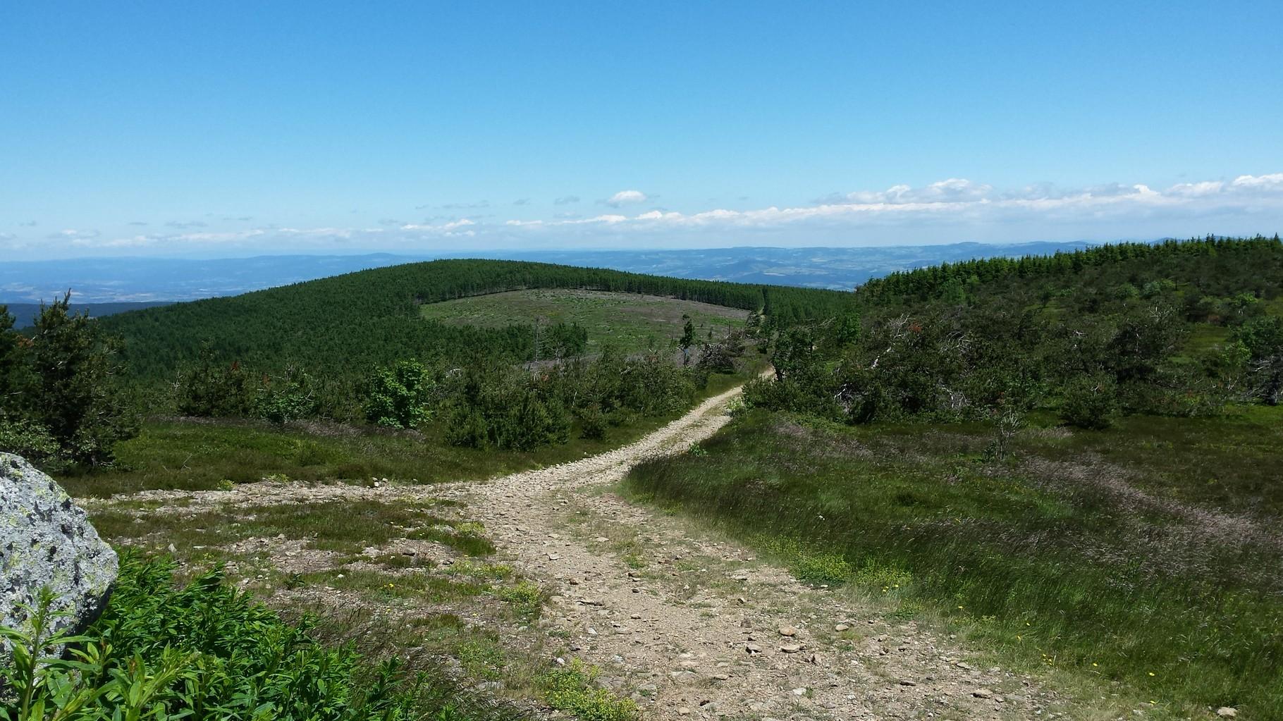 Le Mont Mouchet, hébergement cousinade, La margeride, Saugues, Auvergne
