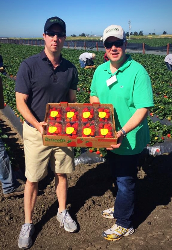 Aris and Gus visited Driscoll's in CA and packed their own boxes of strawberries by hand