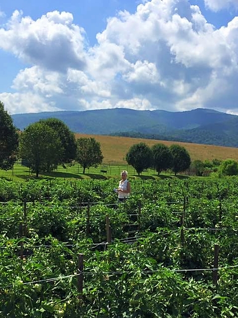 Pete's wife Diane (pictured) joined him on a trip to TN to visit our tomato farm Smoky Mountain Family Farms