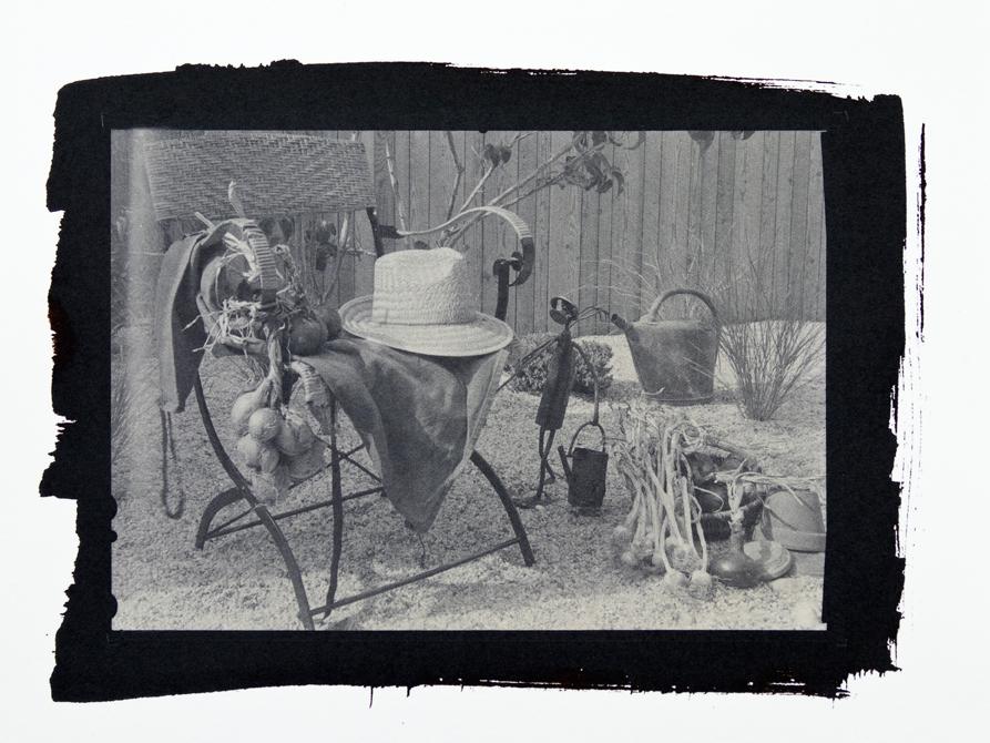 Été 2016 - Dans le jardin de Sténop'Amy - Tirage sur papier salé, virage à l'or