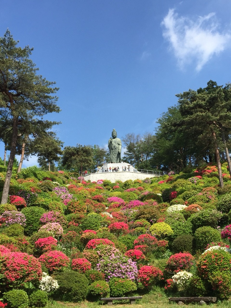 God with Azalea in May at Shiofune Kannon Temple Tokyo Ome