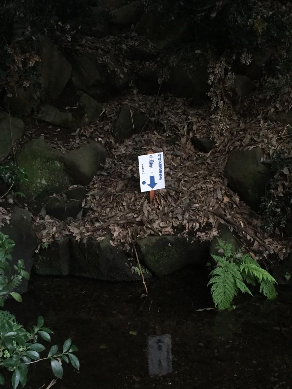 Bamboo Forest (Chikurin) park Natural water spring spot Tokyo Higashikurume