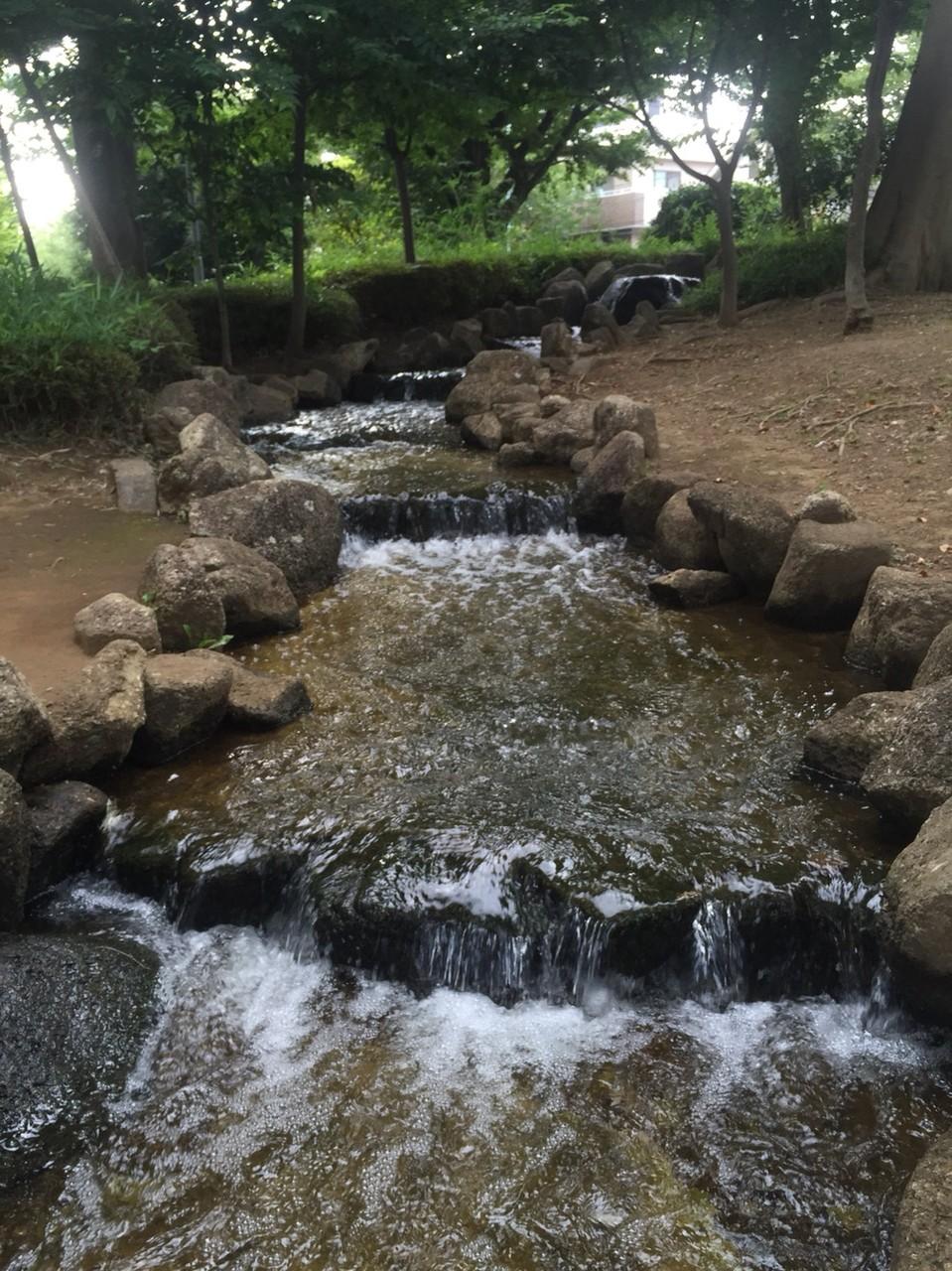 Water stream at Nishigawara Nature Park Tokyo Komae