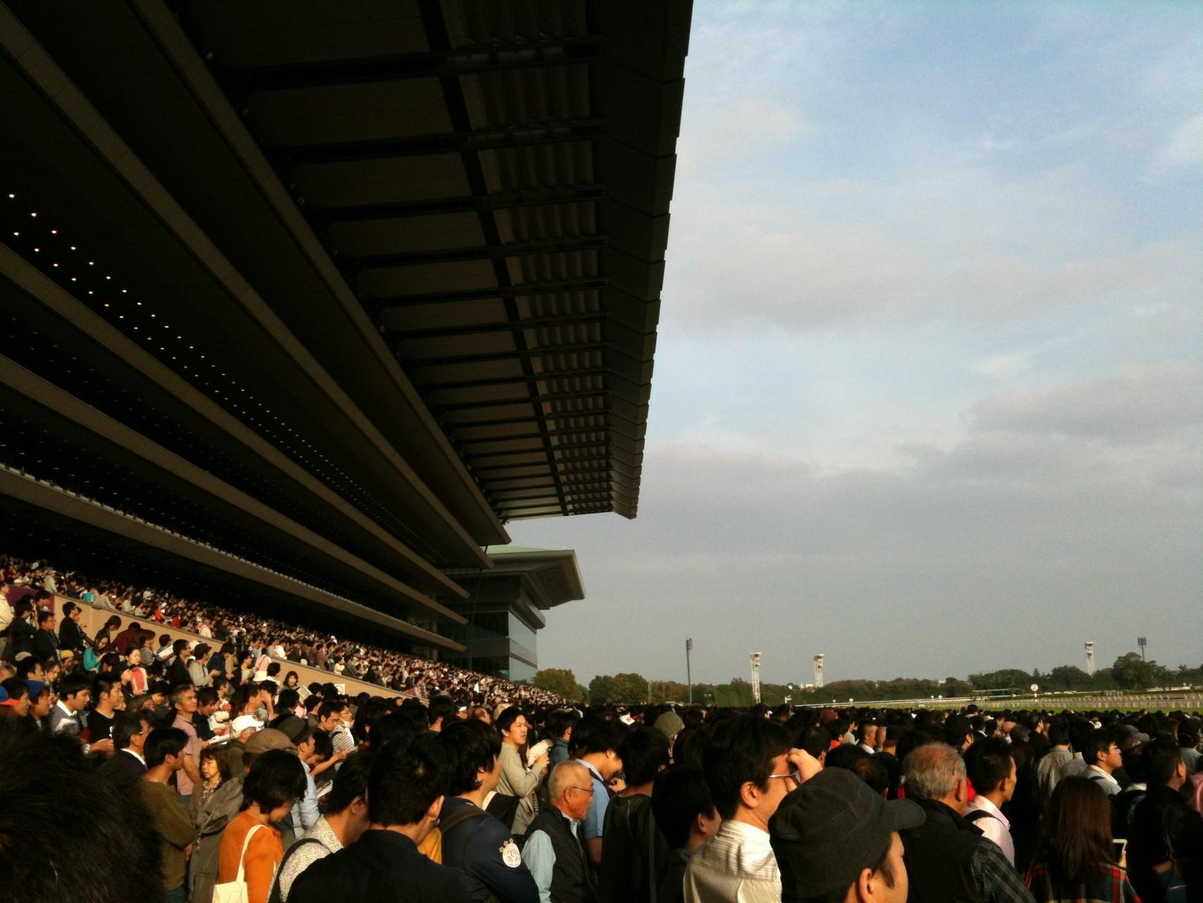 Tokyo Racecourse Main stand Tokyo Fuchu