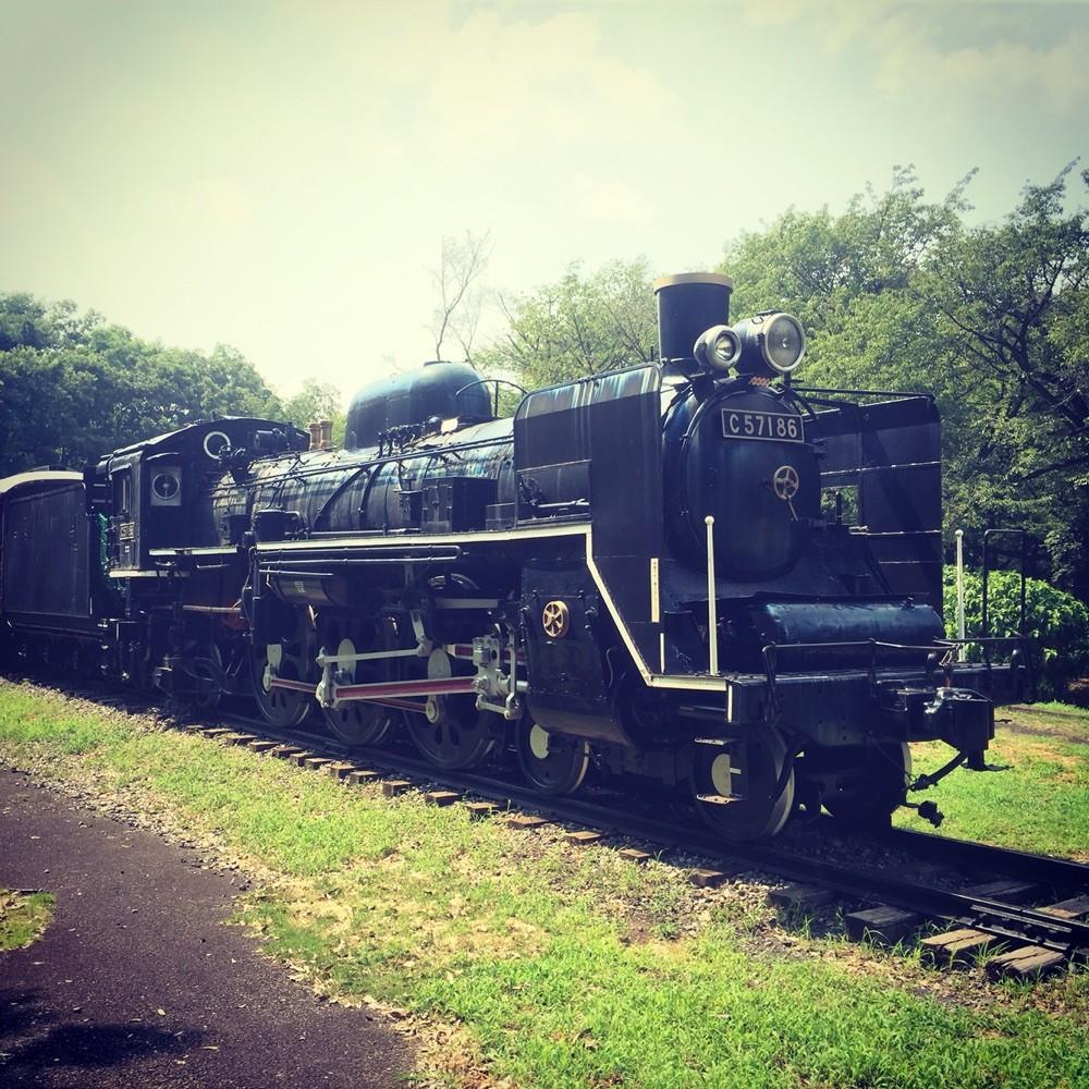 SL C57 at Koganei Park Tokyo Koganei