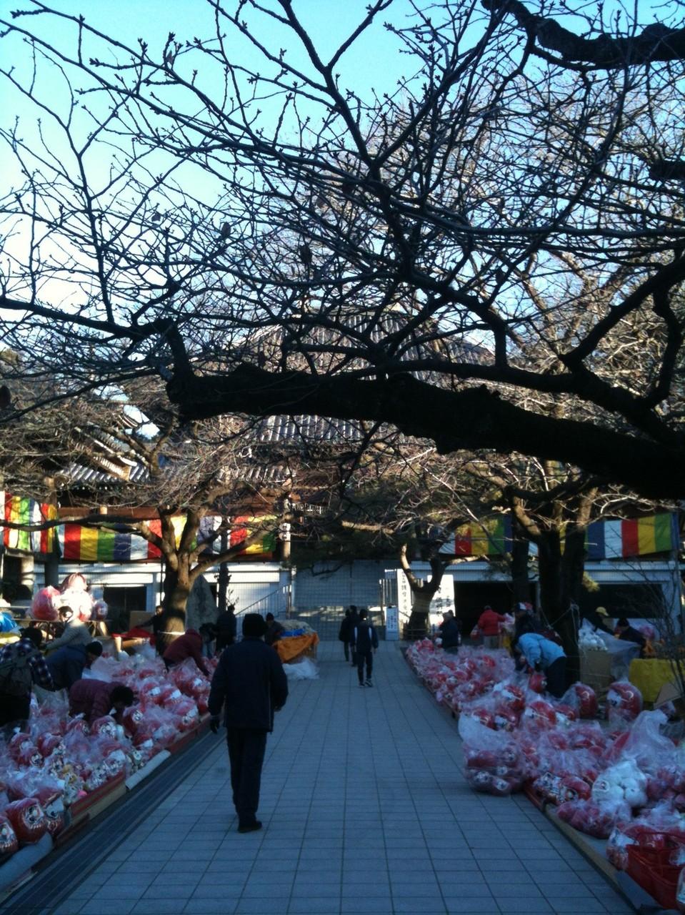 Daruma ichi fair at Haijima Daishi Temple in January Tokyo Akishima