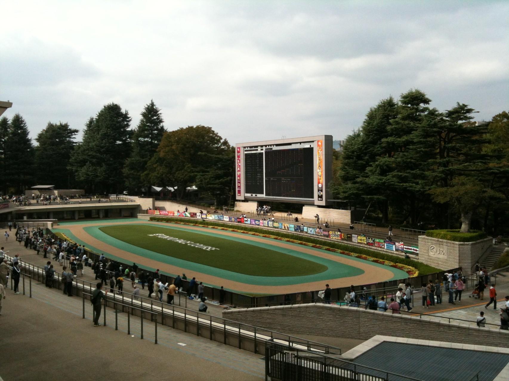 Tokyo Racecourse Paddock Tokyo Fuchu