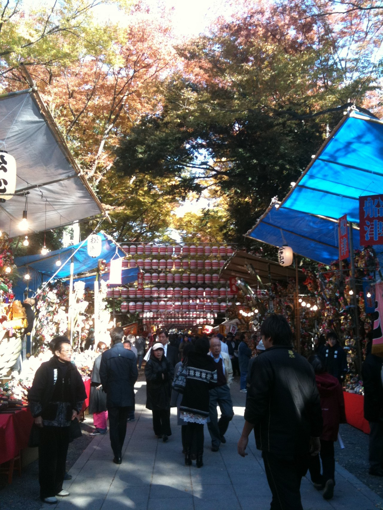 Okunitama Shrine Torino ichi fair in November Tokyo Fuchu
