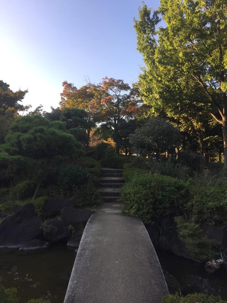 Japanese Garden at Fuchu no mori park Tokyo Fuchu walking retreat picnic tourist spot TAMA Tourism Promotion - Visit Tama 日本庭園 都立府中の森公園 東京都府中市 散策 癒し ピクニック 観光スポット 多摩観光振興会
