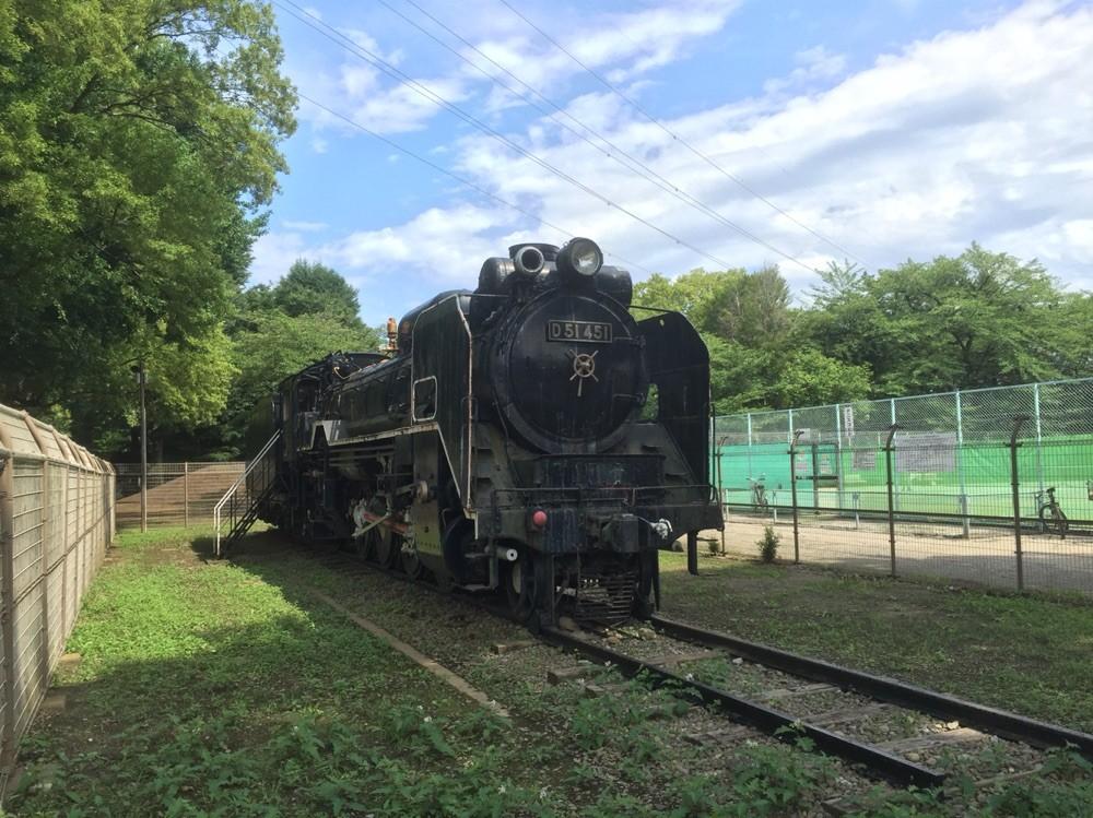 SL D51 train at Showa park Tokyo Akishima