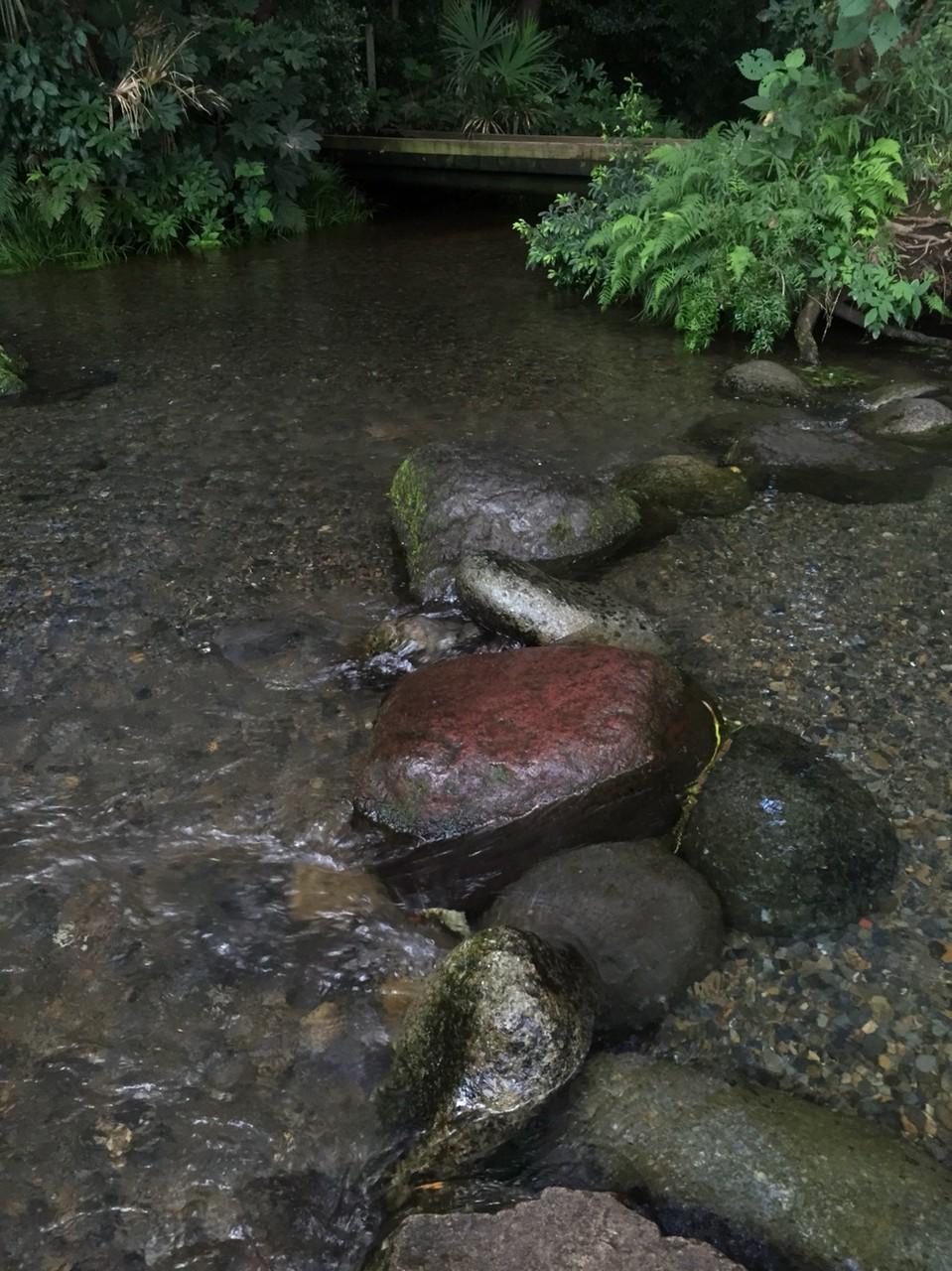 Minamisawa Natural water spring group Tokyo Higashikurume