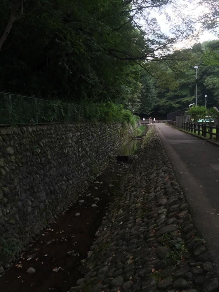 Upper stream of Karabori River Tokyo Musashimurayama noyamakita park picnic refresh tourist spot TAMA Tourism Promotion - Visit Tama 空堀川 上流域 東京都武蔵村山市 ピクニック リフレッシュ 散策 観光スポット 多摩観光振興会