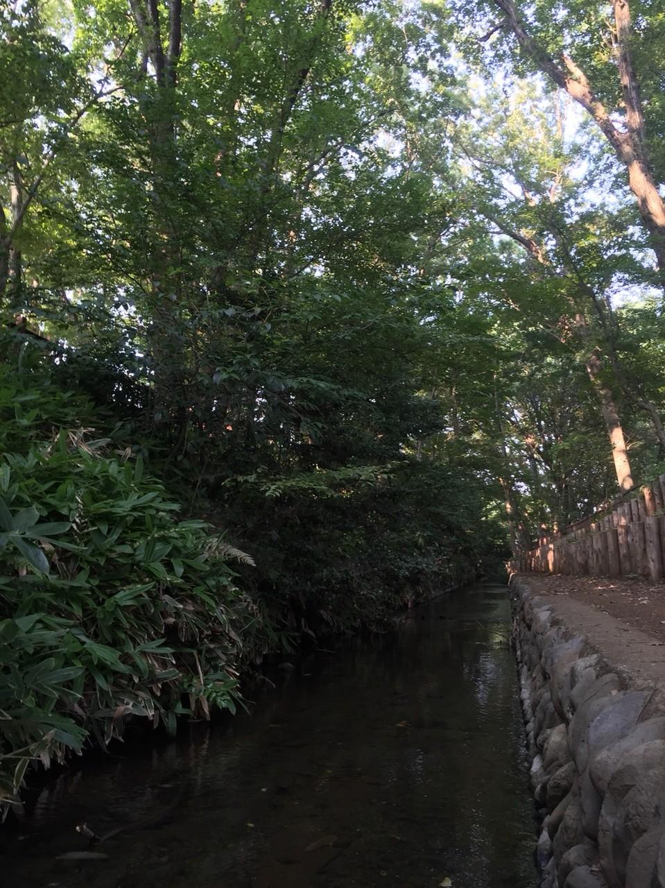 Nobidomeyosui aqueduct / waterway Tokyo Kodaira