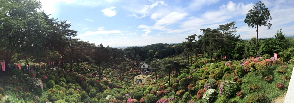 Ome city view from Shiofune Kannon Temple in May Tokyo Ome
