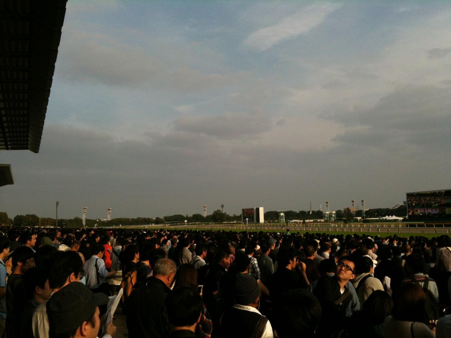 Tokyo Racecourse Tokyo Fuchu
