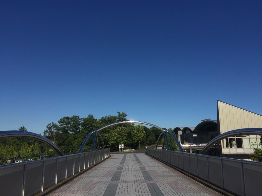 Bridge to Inagi Central Park Tokyo Inagi