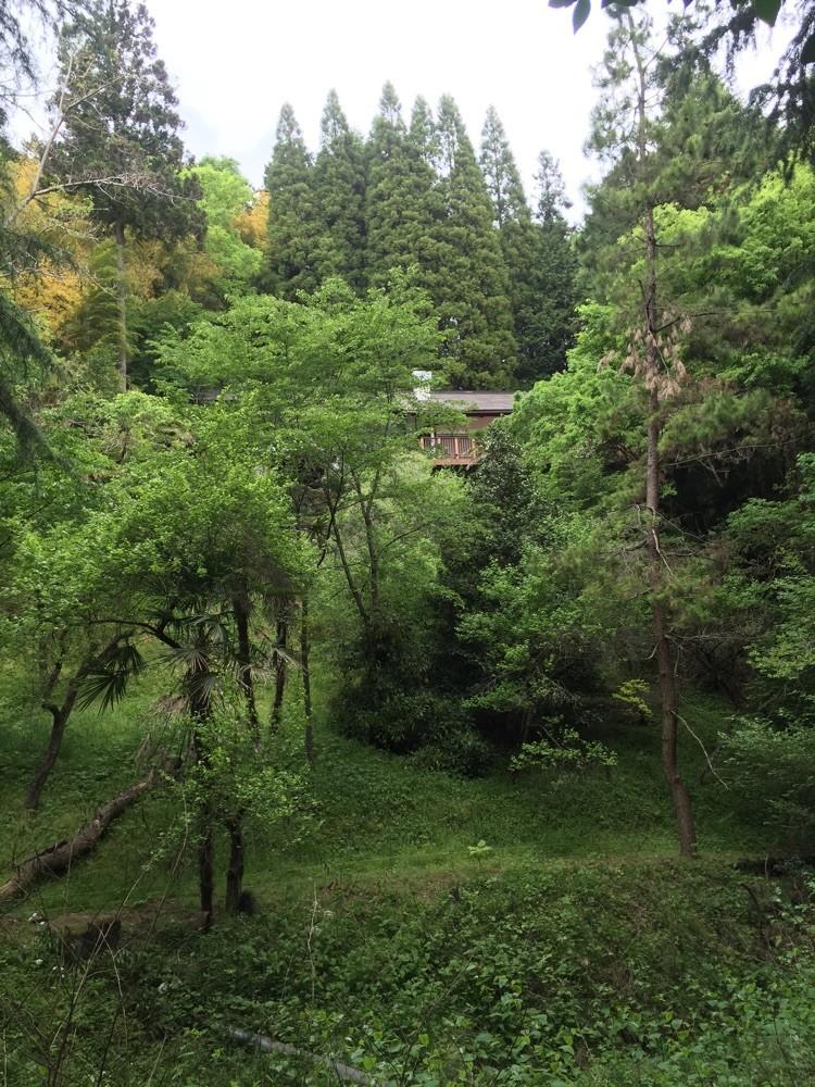 Hinodesanso Villa Tokyo Hinode historical tourist spot TAMA Tourism Promotion - Visit Tama 日の出山荘 東京都日の出町 歴史 観光スポット 多摩観光振興会