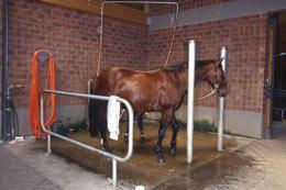 Pferde Waschplatz