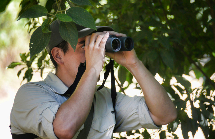 Our guide Raúl Fernández searches for a quetzal through his binoculars.