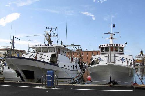 Livorno, la nostra banchina al porto mediceo