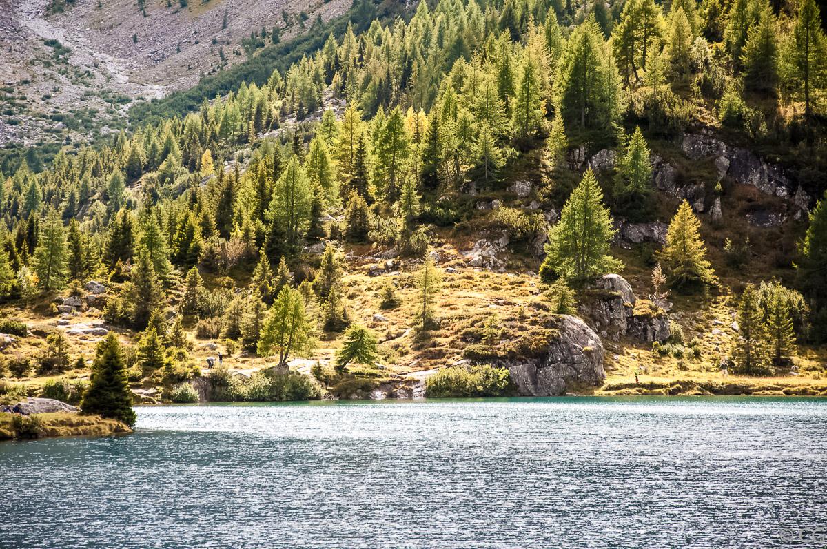 Luci sul lago d'Aviolo