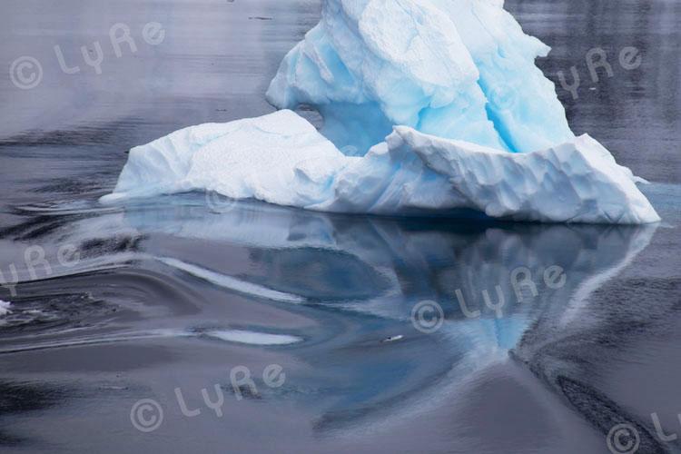2011-11-26 - Antarktische Halbinsel (Antarctic Peninsula), Neko Harbour