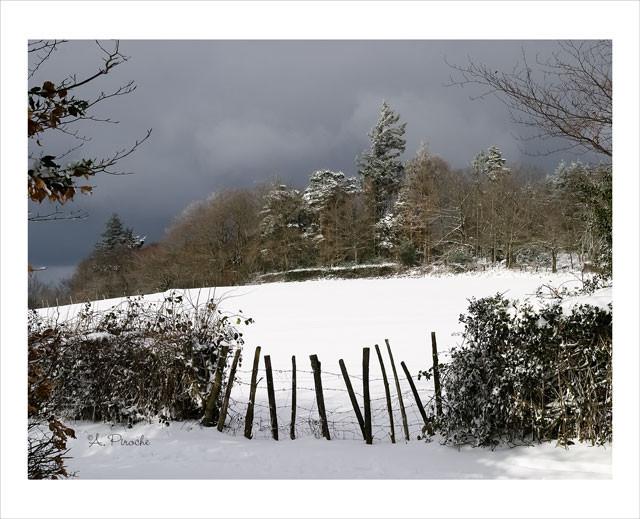 L'hiver - Toile 61x46