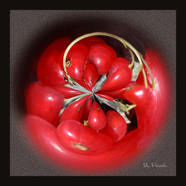 Rouge groseille - Toile 40x40