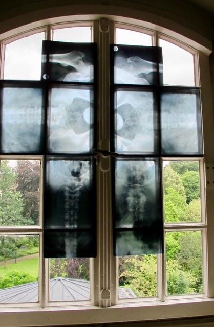 """ortsgebundene Installation mit Röntgenbildern, Apothekenmuseum Rhede, 2016 """"das Kreuz"""""""