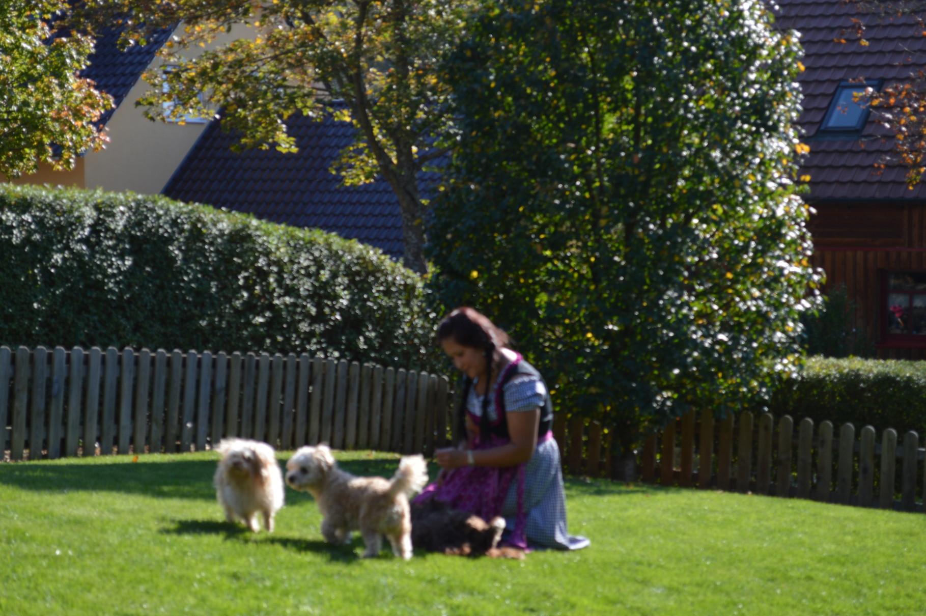 Sogar Heidi kam von ihrer Alm zu uns auf Besuch