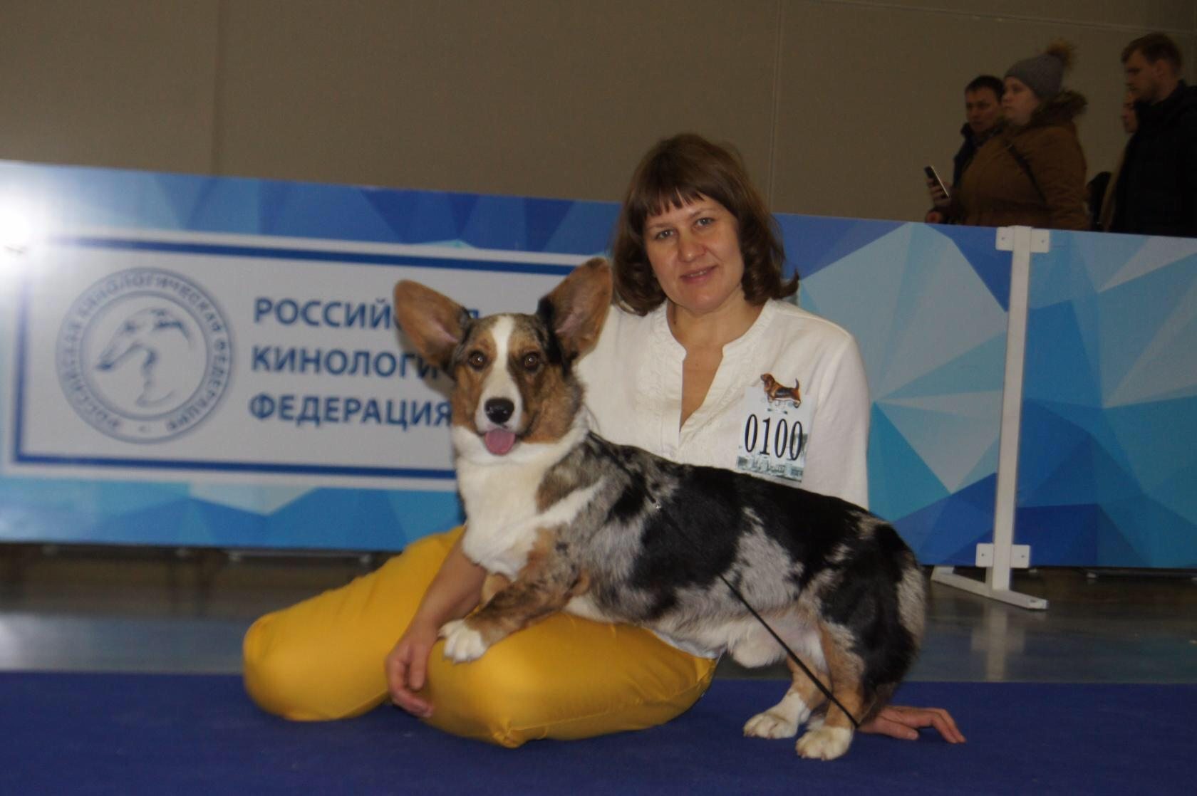 "2.5 года""Россия "" RCACIB"