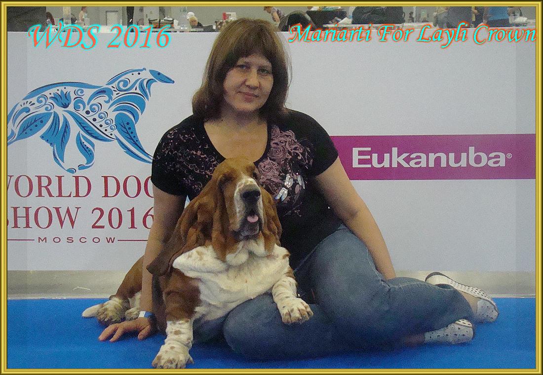 WDS 2016 г. Москва Мариарти 3 года и 11 мес