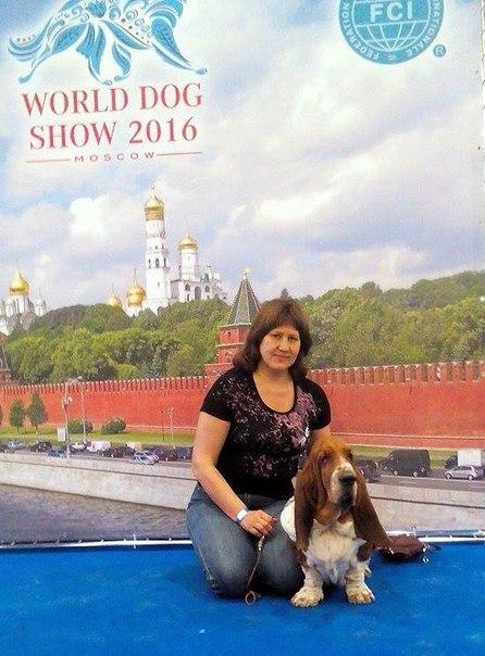 23 /06/ 16/ г. Москва WDS 2016 /3 года и 11 мес