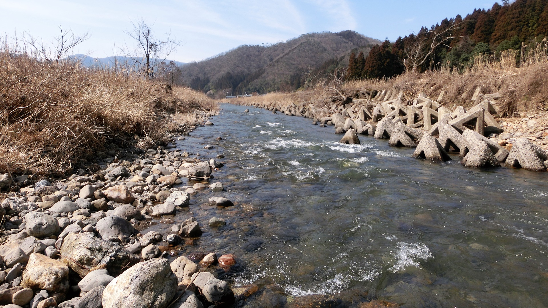 田倉社谷上流