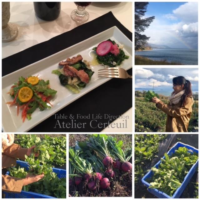 Atelier Cerfeuil畑と採れた野菜で料理