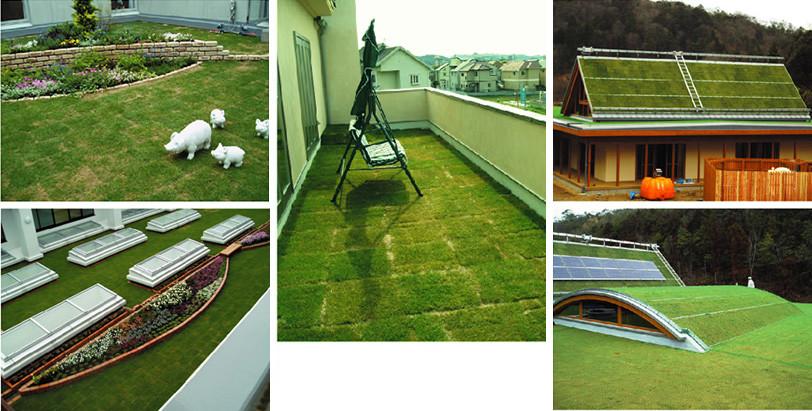 緑化基盤材施工実績写真
