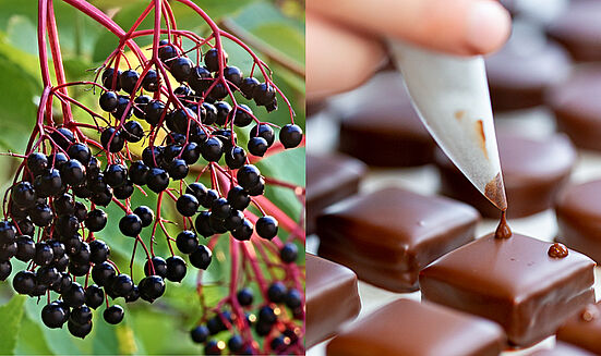 Concours «Le praliné au fruit sauvage»