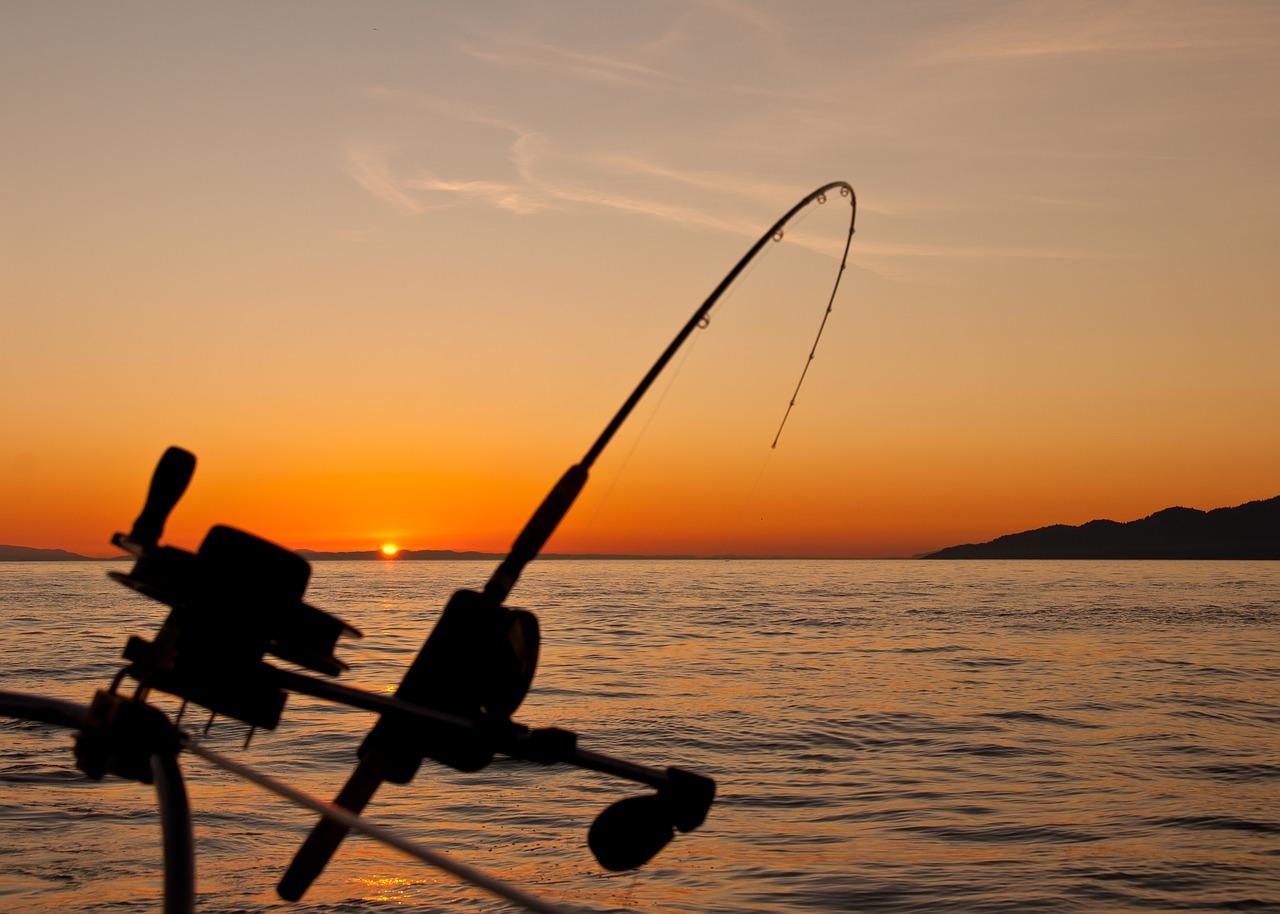 camping-pêche dans les Landes