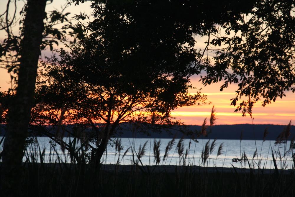 camping-familial-bord-lac-de-biscarrosse