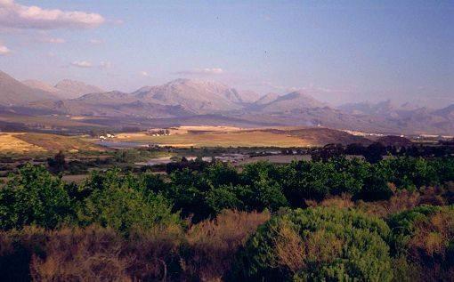 Le Cederberg, Afrique du Sud, pays natal du rooïbos