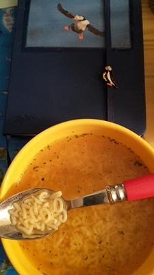Auf dem Bild seht ihr mein NaNo-Tagebuch 2015 und das passende Essen für Naniten: Buchstabensuppe.