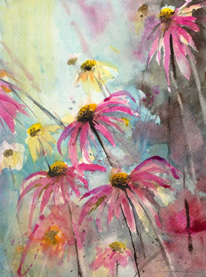 Echinazea, Aquarell gemalt von Jopie Bopp