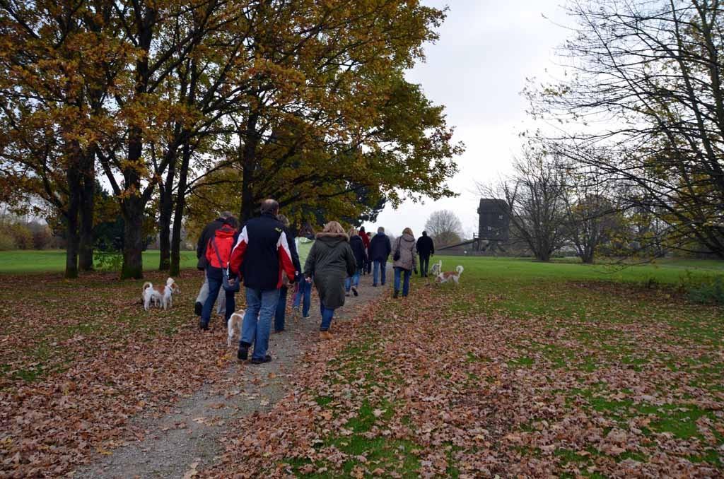 Schöner Herbst-Spaziergang