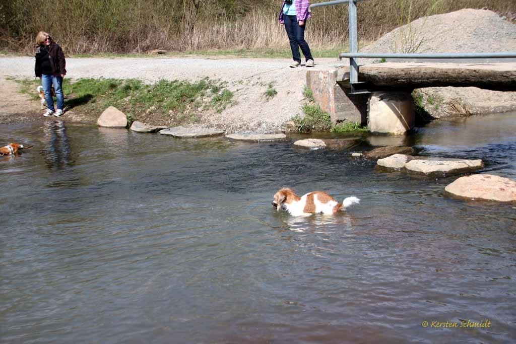 Anton: Na gut, dann hole ich auch mal Stöckchen aus dem Wasser!
