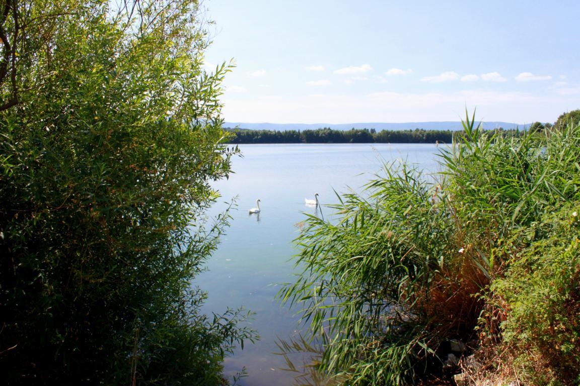 Idylle am Wiedelaher See