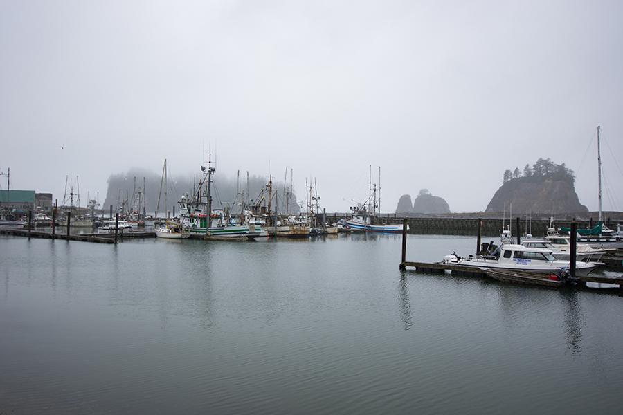 Der kleine Hafen von La Push.