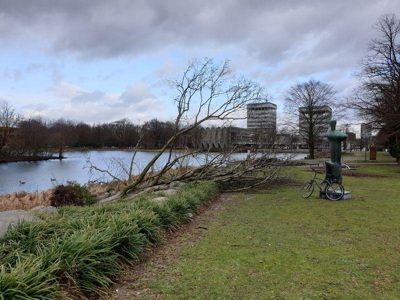 10. Febr. 2020: Orkan über dem City-See