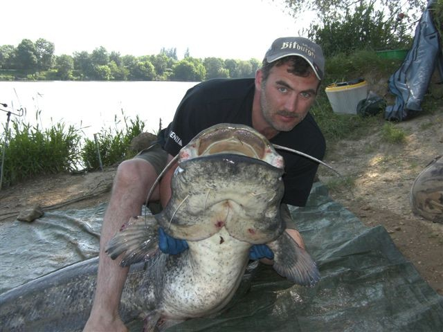 Heiko Weis mit einem Riesen Waller 2,20m 78 Kg