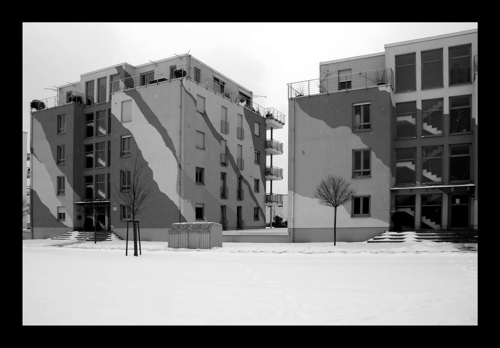 · trier · 2010-02-14-011 · yak © 2010 RK